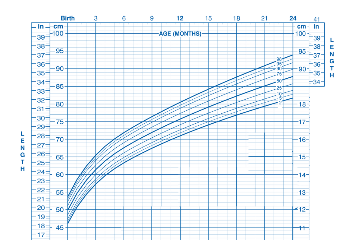 growth-chart-boys-birth-to-24-mo-length-for-age-percentile